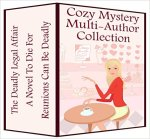 Cozy Mystery Multi-Author Collection